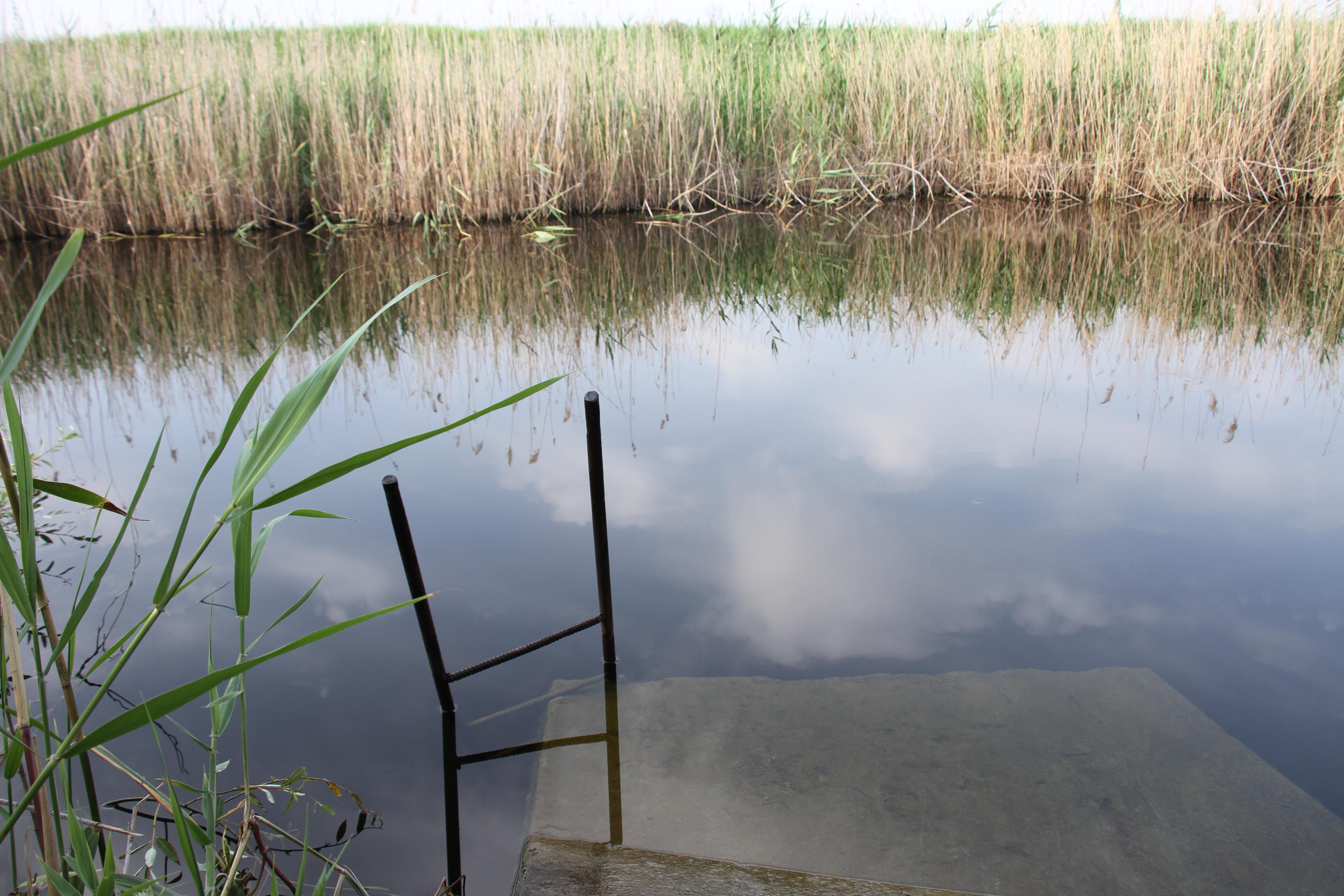 Заводь реки Евсуг