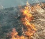 возгорание травы