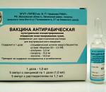 privivka-ot-beshenstva-cheloveku-2