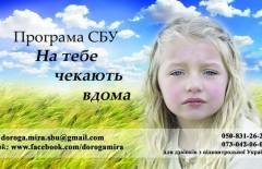 n_2554_89313053