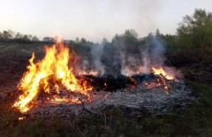 северодон_пожар