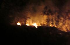 пожар_кондраш