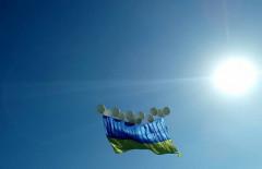 флаг_7